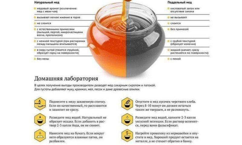 лучшие препараты железа при анемии форум