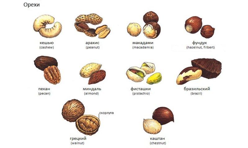 Вредные антиоксиданты изоражения