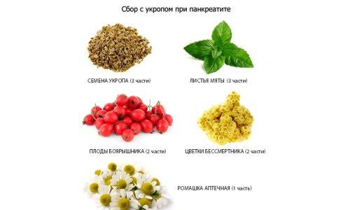 Травяные сборы при панкреатите