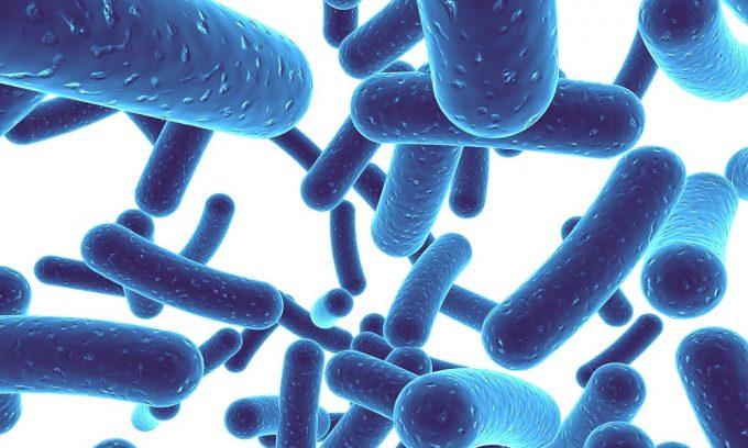 Содержание пробиотиков и пребиотиков в кефире с миссией лечебного питания при панкреатите, очищающих желчные протоки и повышающих иммунитет