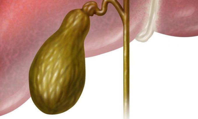 Этанол губительно воздействует и на желчный пузырь